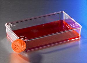Matraz de perfil bajo con un área de crecimiento celular de 100 cm2