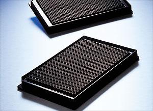 Microplaca de 384 pozos color blanco o negro y fondo transparente de poliestireno