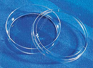 Caja para cultivo celular sin tratamiento