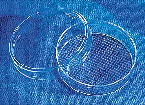 Caja para cultivo celular con tratamiento